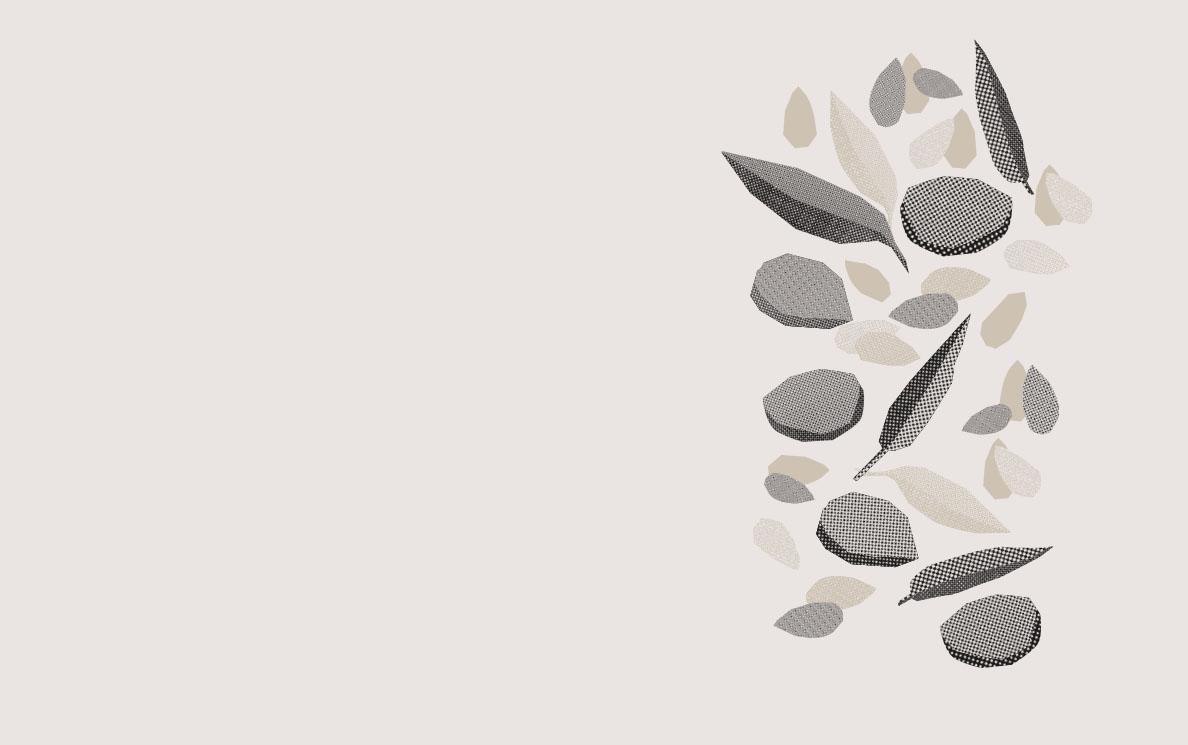Roca Sola Productor Ecológico de Cerezas, Almendras, Aceite de Oliva y Mermeladas